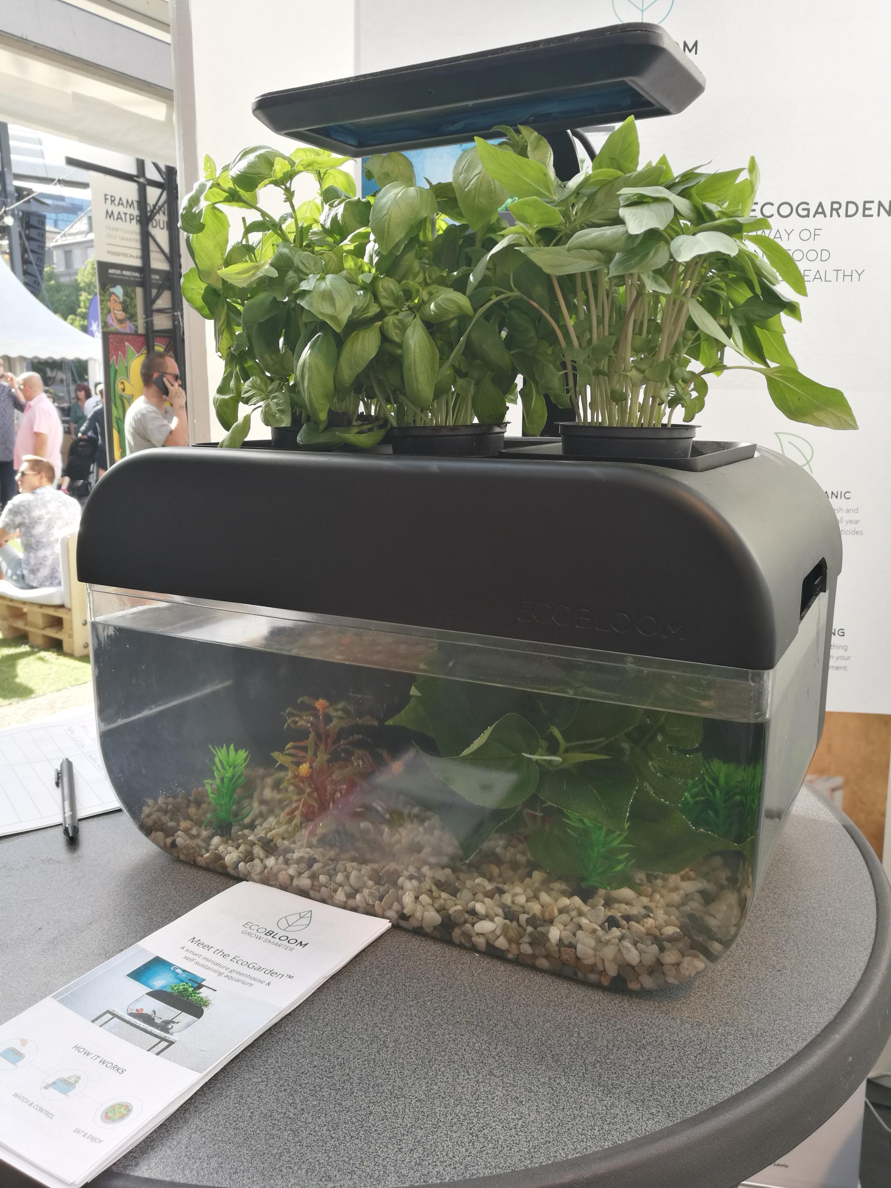 EcoGarden at Smaka på Stockholm