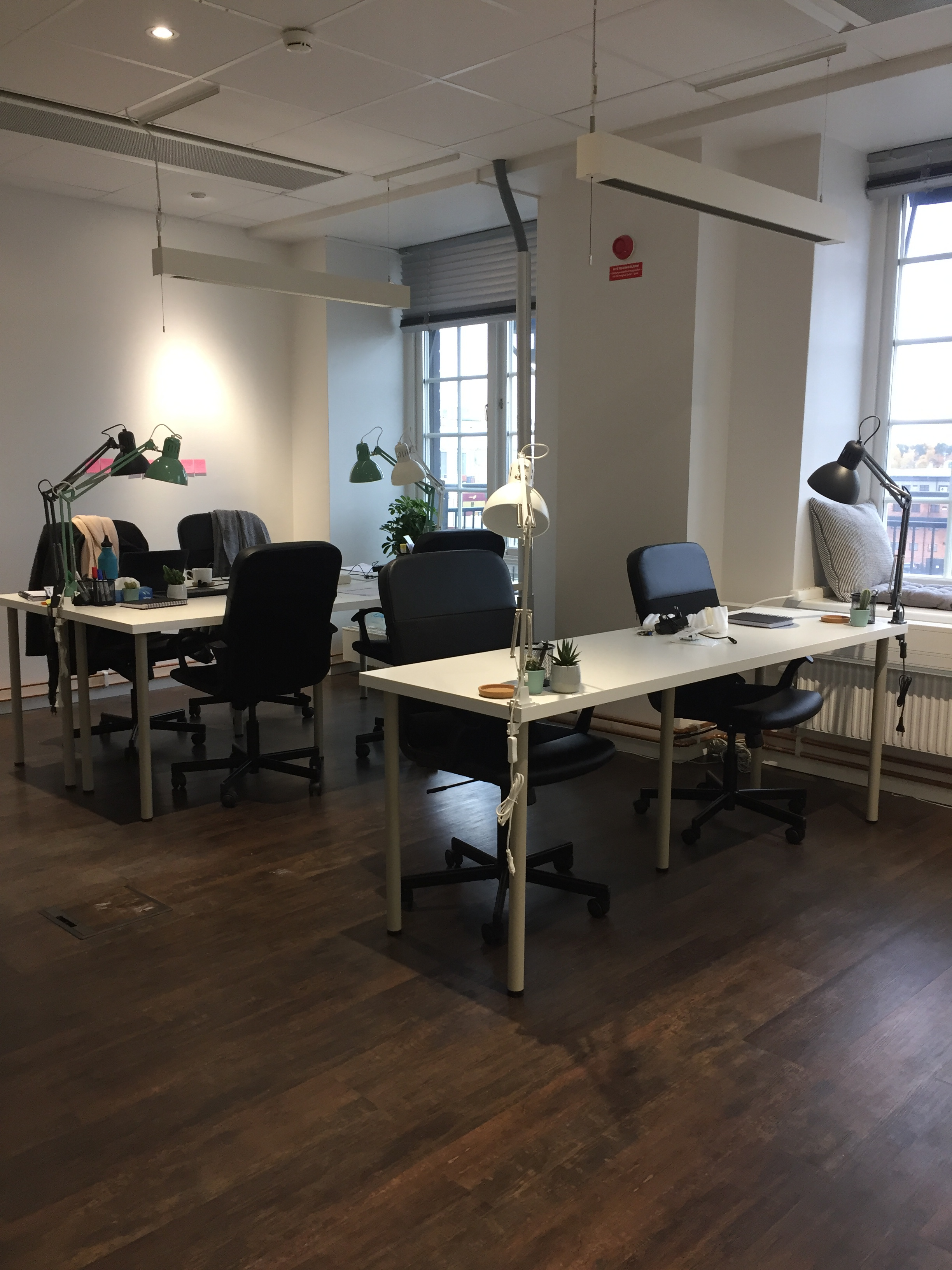 new ecobloom office